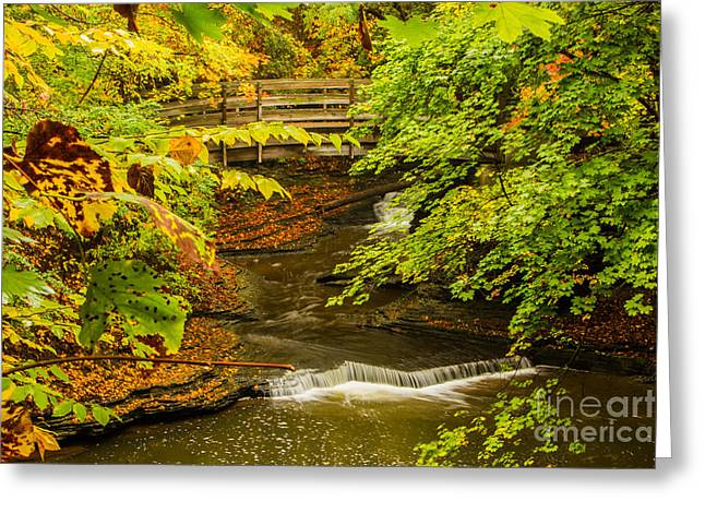 Cascadilla Gorge Cornell University Greeting Card