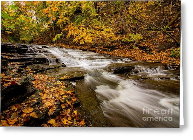 Cascadilla Gorge Trail Greeting Card
