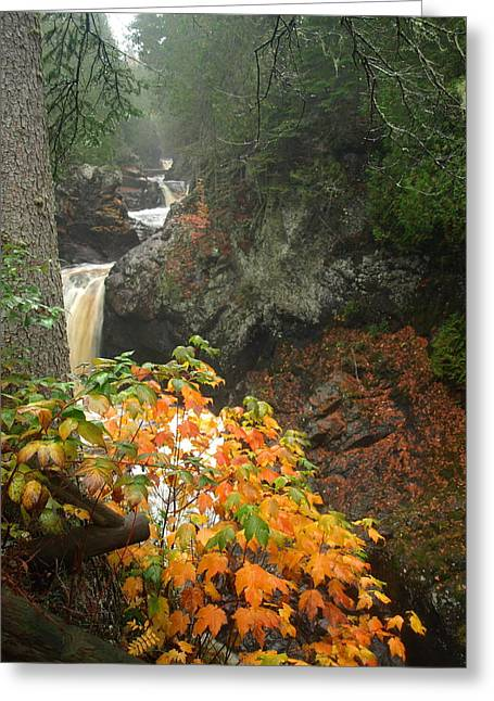 Greeting Card featuring the photograph Cascading Steps by James Peterson