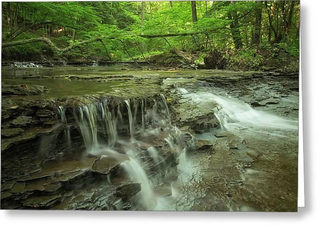 Cascading Water In Columbia Run Creek Greeting Card by Debbie Dicarlo