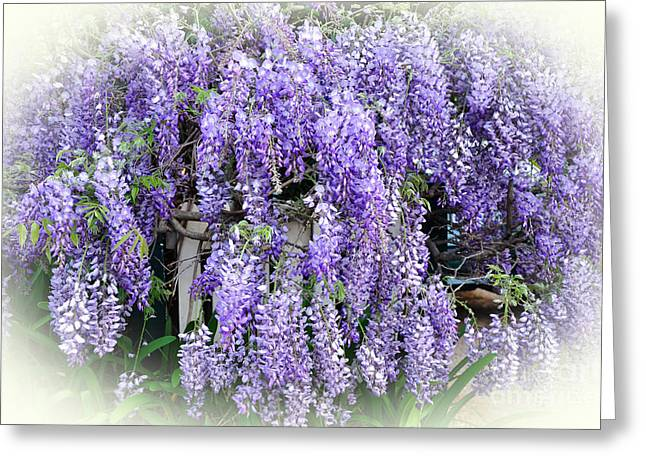 Cascading Wisteria Greeting Card by Kaye Menner