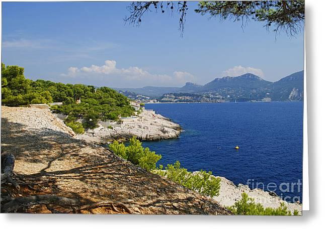 Amazing Coast Of Cassis On French Riviera Greeting Card by Maja Sokolowska
