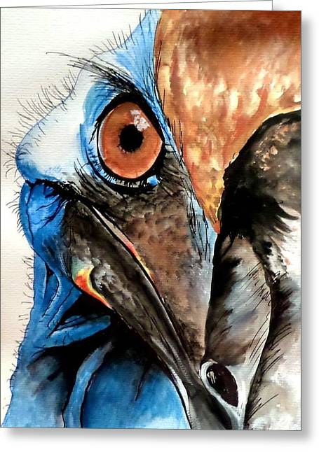 Cassowary No 2 Greeting Card
