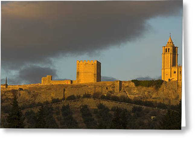 Castillo De La Mota Greeting Card