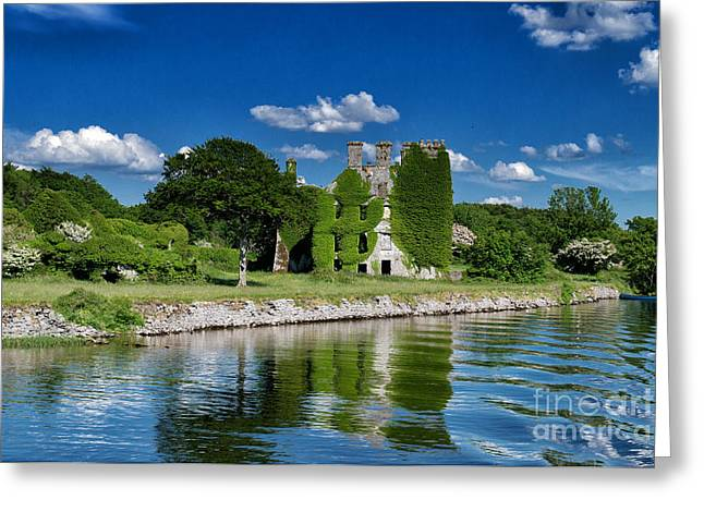 Castle Menlo  Greeting Card by Juergen Klust