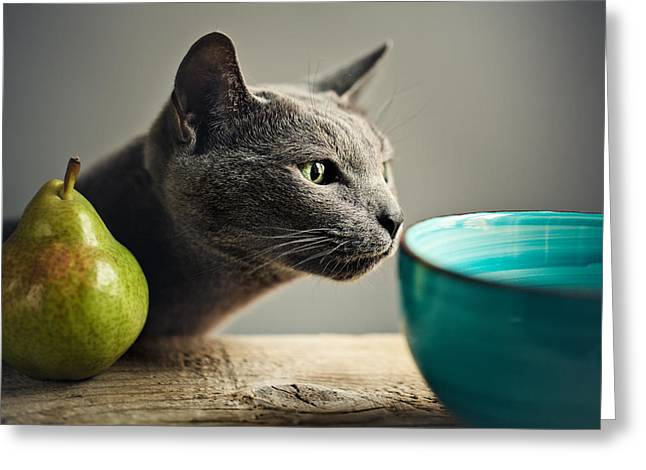 Cat And Pears Greeting Card by Nailia Schwarz