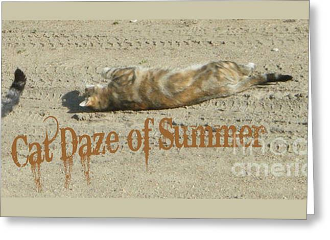 Cat Daze Of Summer Greeting Card by Marianne NANA Betts
