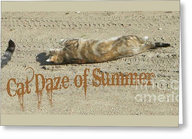Cat Daze Of Summer Greeting Card