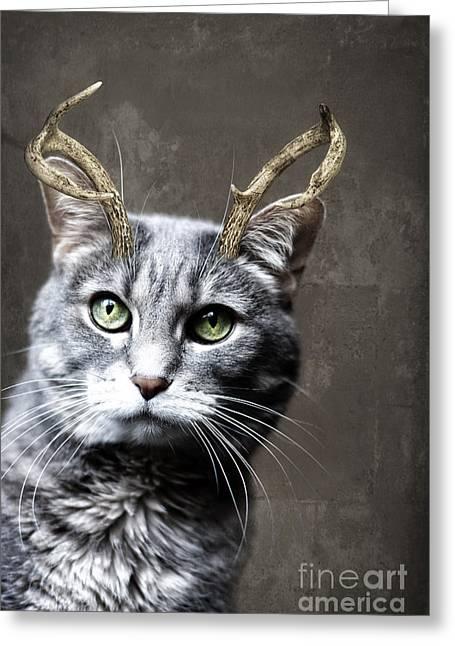 Cat Deer Greeting Card