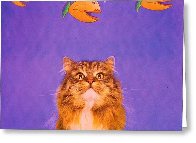 Cat Dreaming Greeting Card by Anne-Elizabeth Whiteway