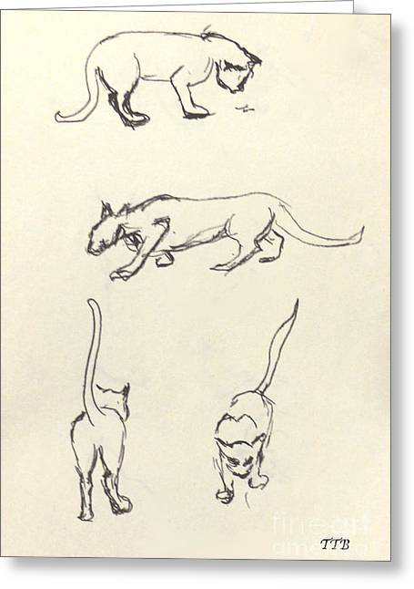 Cat Lines Greeting Card