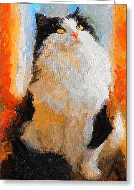 Cat Looking Up Greeting Card by Yury Malkov