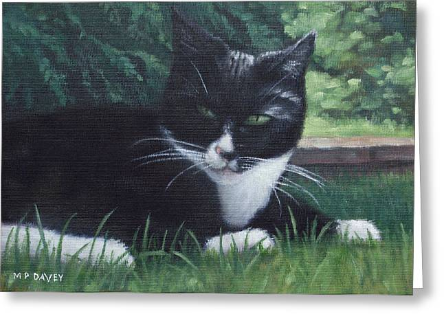 cat Greeting Card by Martin Davey
