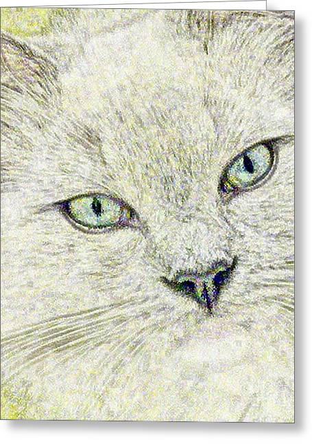 Cat - Mink Ragdoll - Smokey Blu Greeting Card by Donna E Pickelsimer
