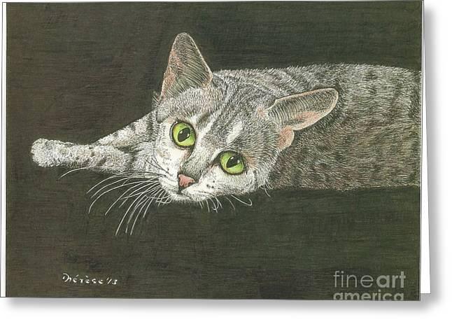 Cat On Black Greeting Card by Bill Hubbard