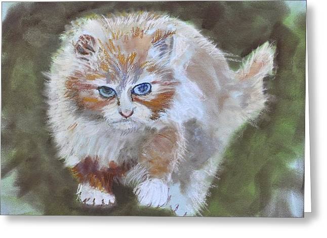 Cat On The Hunt Greeting Card
