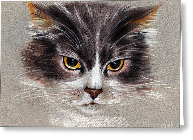 Cat Portrait Yellow Eyes Greeting Card
