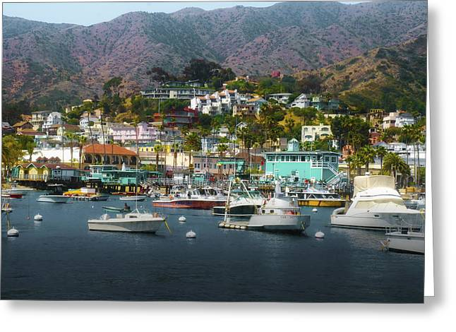 Catalina Express  View Greeting Card by Joseph Hollingsworth