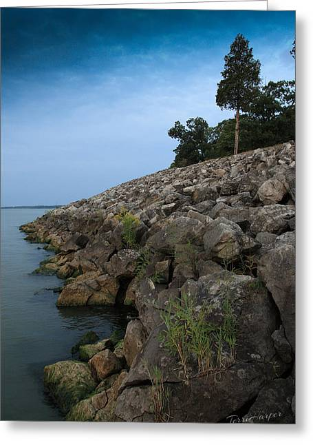 Catawba Point Shoreline Greeting Card