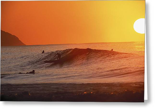 Catching A Wave At Sunset Greeting Card by Vince Cavataio - Printscapes