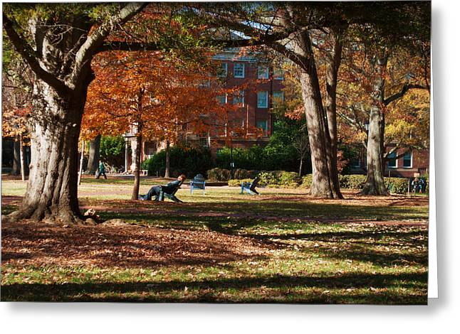 Catching Rays - Davidson College Greeting Card by Paulette B Wright