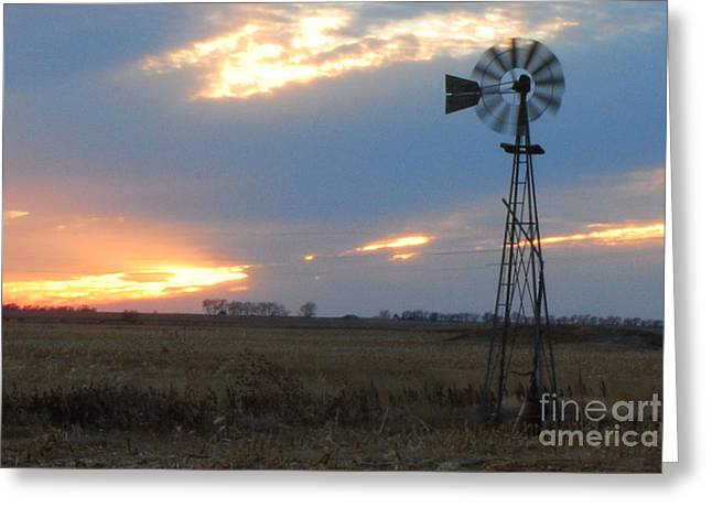 Catching The Wind In South Dakota Greeting Card by Mary Carol Story