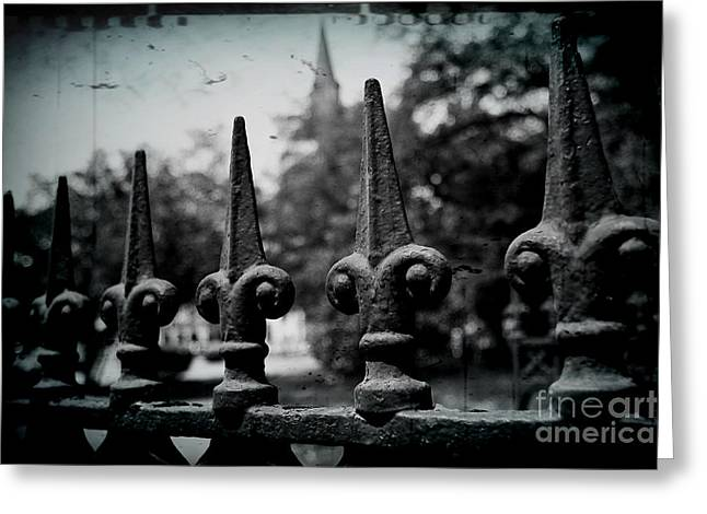Cathedral Fence Greeting Card by Scott Pellegrin