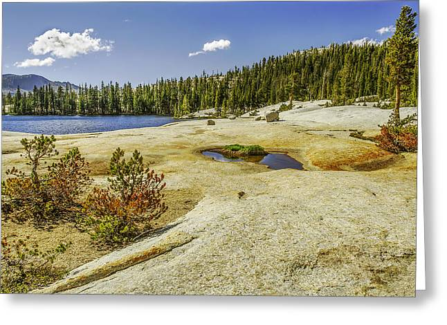Cathedral Lakes-yosemite Series 18 Greeting Card by David Allen Pierson