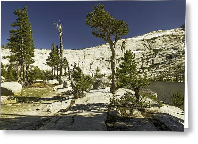 Cathedral Lakes-yosemite Series 20 Greeting Card by David Allen Pierson