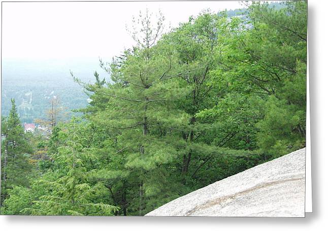 Cathedral Ledge View Greeting Card by Elizabeth Joslin