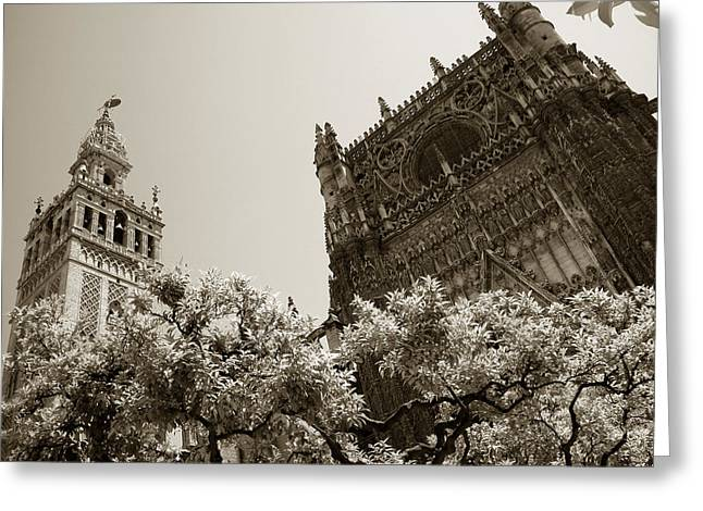 Cathedral Of Seville Greeting Card