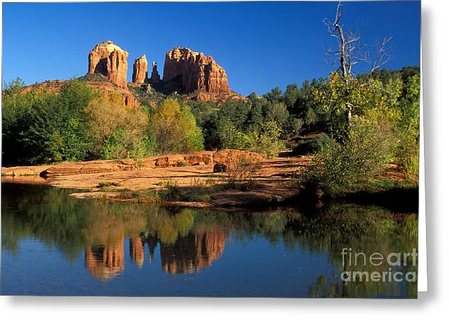 Cathedral Rock Greeting Card by Mark Newman