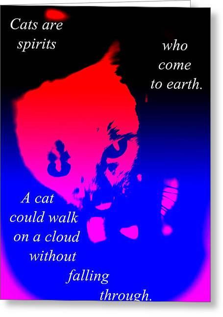 Cats Are Walking Spirits Just Like Yourself   Greeting Card