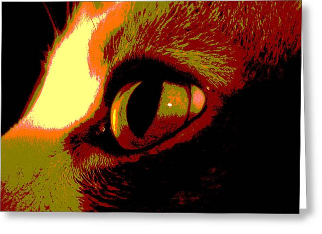 Cat's Eye Abstract  Greeting Card by Ann Powell