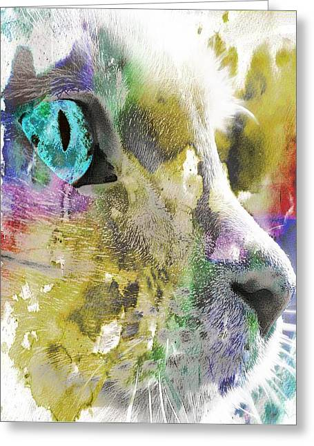 Cat's Eye Abstract Greeting Card