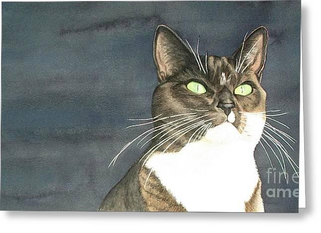Cats Eyes Greeting Card