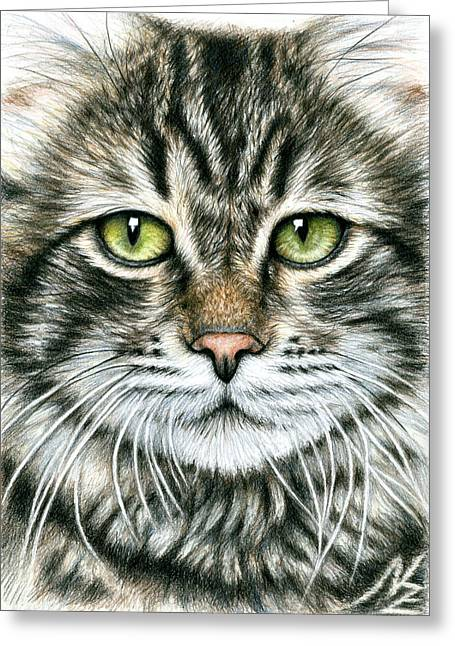 Cats Face Greeting Card by Nicole Zeug