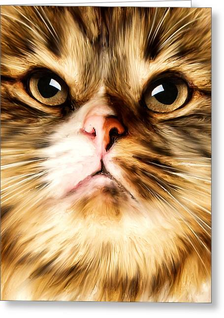 Cat's Perception Greeting Card