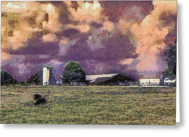 Cattle Country Sunset Greeting Card by Barry Jones