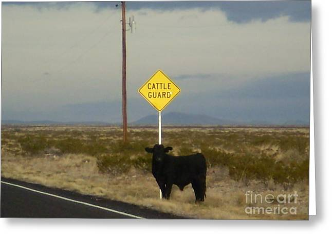 Cattle Guard Greeting Card