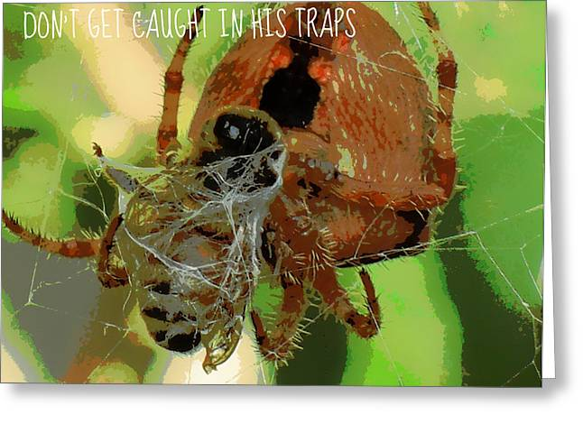 Caught Greeting Card by Heidi Manly