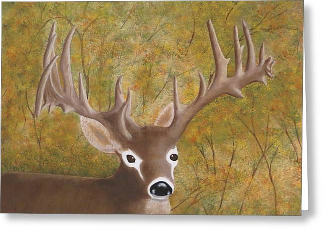 Caught In The Headlights Greeting Card by Tim Townsend