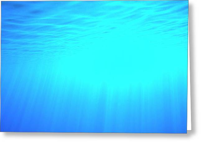 Caustic Rays Below The Sea Surface Greeting Card by David Parker