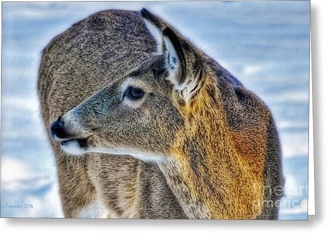 Greeting Card featuring the photograph Cautious Deer by Trey Foerster