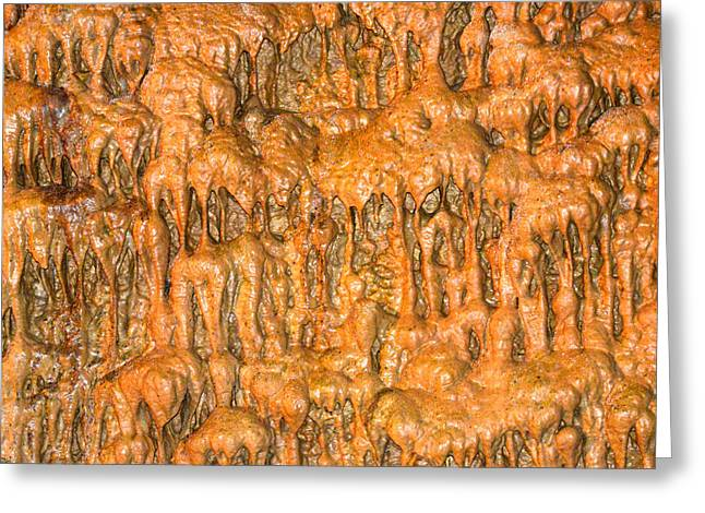 Cave Formation 5 Greeting Card by T C Brown