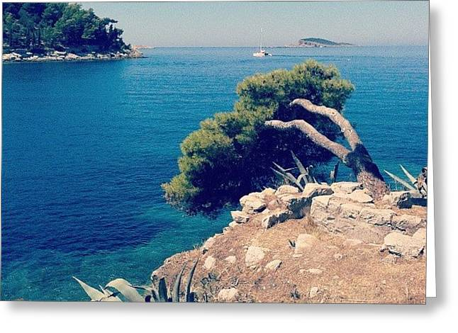Cavtat - Croazia Greeting Card