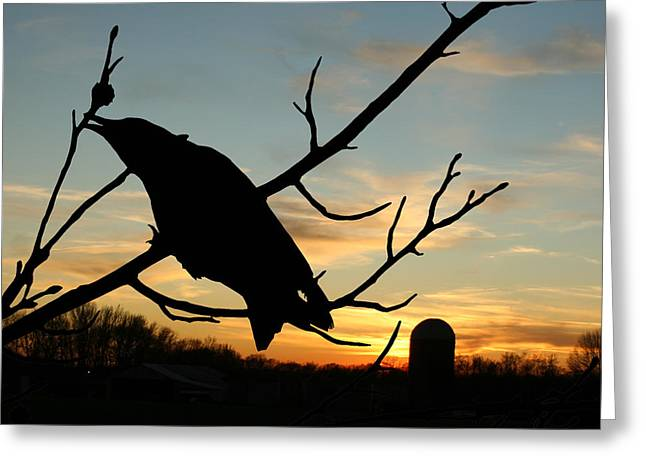 Cawcaw Over Sunset Silhouette Art Greeting Card