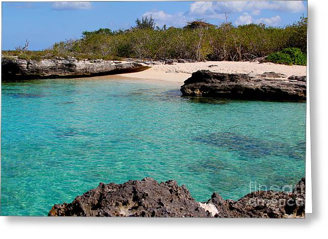 Cayman Beach Greeting Card by Carey Chen