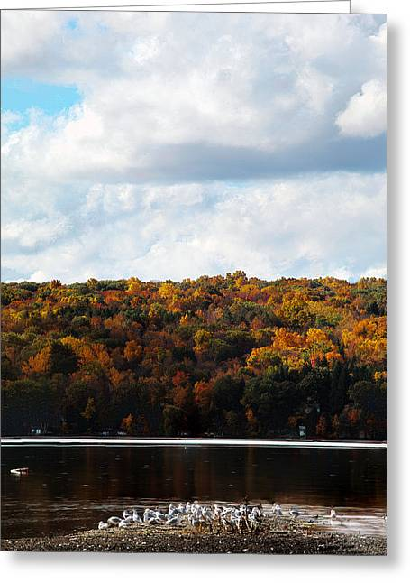 Greeting Card featuring the photograph Cayuga Lake In Colorful Fall Ithaca New York  by Paul Ge
