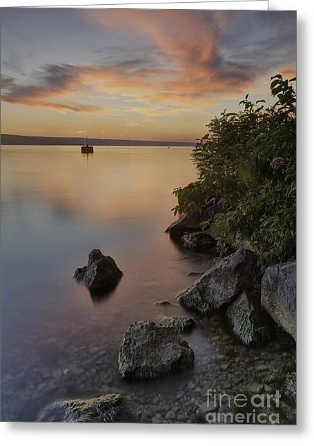 Cayuga Sunset I Greeting Card